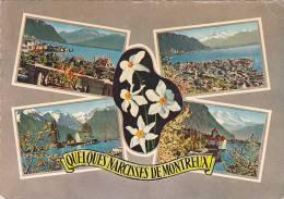 21742 Quelques Narcisses De Montreux . Multi Vues 865 Jaeger Geneve - VD Vaud
