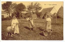 E1248  -  Types Ardennais   *récolte De Pommes De Terre* Mouton * - Autres