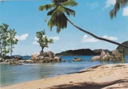 SEYCHELLES,OCEAN INDIEN,EXPLORE PAR VASCO DE GAMA,ANSE BOUDIN PRASLIN,PHOTO EDEN MAHE - Seychelles