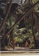 SEYCHELLES,OCEAN INDIEN,EXPLORE PAR VASCO DE GAMA,MAHE,VILLAGE,ROUTE,ENFANT HEUREUX,PHOTO PETER ERBE - Seychelles