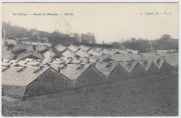 17006g HORTICULTURE - Serres - Route De Malaise - La Hulpe - 1912 - La Hulpe