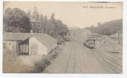 Walcourt : La Station (carte Postale) - Train. Gare. Namur. - Walcourt