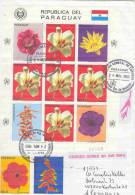Paraguay - Omslag By Air Mail  1983 (RM0183 ) - Planten