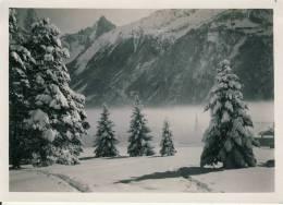 Photo Format 18-12 Cm  Chamonix - Places
