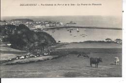 DOUARNENEZ - Vue Générale Du Port Et De La Baie - La Prairie Des Plomarchs - Douarnenez