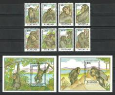 Tanzania 1992 ( Common Chimpanzee ) - Complete Set With 2 S/S - MNH (**) - Tanzania (1964-...)