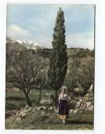 43293 - Un Coin Pittoresque Et Le Mont Ventoux (84)  Comtat Venaissin - Costumes