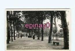 Br- 03 - SAINT POUCAIN SUR SIOULE - Le Cours - édit. La Cigogne - - France