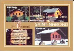 88 - Vosges - Saint-Nabord - Les Chalets - Format  10,3 X 14,7 - Saint Nabord