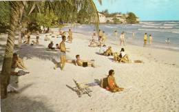 Barbados - West Indies - Rockley Beach, Christ Church - AK3640 - Barbados