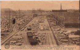 BELGIQUE:SOIGNIES:(Hainaut):1929:Carrières Du Hainaut.Chantiers Et Scieries. - Soignies