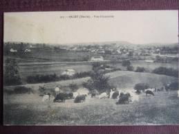 ARCEY / VUE D'ENSEMBLE / BELLE CARTE ANIMEE (TROUPEAU DE MOUTONS ET SES GARDIENS) / 1912 - Autres Communes