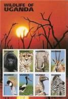 UGANDA 1996 WILDLIFE ANIMALS MINI SHEET MNH - Uganda (1962-...)