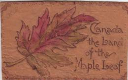 Canada The Land Of The Maple Leaf - Leather, Edging Removed Postmark: Waltham(?) AUG  8 1906 From USA - Cartes Postales