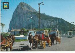 "N° 24 La Linea (Cadis) Vue Du ""Penon De Gibraltar - Altri"