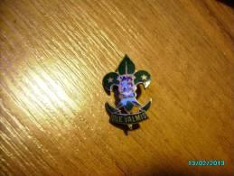 ESTONIA  SCOUTING  , BOY SCOUT   MERIT  BADGE , BEFORE 1940 - Scouting