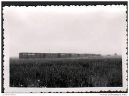 59 - PHOTOS 9,3X6,3 Cm DE 1960 - 130T PIGUET DE 25T N°30 ET TRAIN MIXTE PRES DE VILLERS EN CAUCHIES - Trains