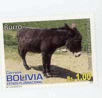 Ane-Bolivie-1 Valeur***MNH