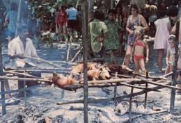 (660) Tonga Pig Roasting - Puaka Tunu - Tonga