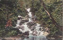 Postcard Agua Caliente 1900-1910( Postally Not Used) - Honduras