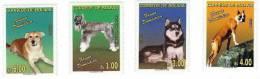 Bolivia / Animals / Dogs - Bolivia