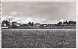 L1108 - Bursinel - VD Vaud