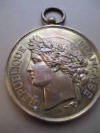 Société Nationale De Tir Des Communes De France /Médaille D´honneur/RF/vers 1885    D161 - Professionnels / De Société