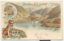 3300BIS-GRUSS AUS-GRAND ST. BERNARD(SUISSE)-1909-FP - Souvenir De...