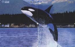 PUZZLE De 4 Télécartes Chine - Dauphin Baleine ORQUE - ORCA Whale Phonecards Telefonkarten - 187 - Puzzles