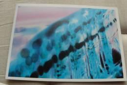 UWE POINTNER - Color Visions 1995 - Publicité
