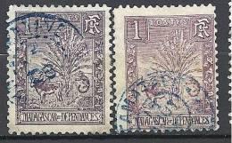 MADAGASCAR TYPE ZEBU 2 NUANCES  N� 63 OBL