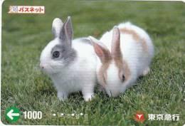 JAPAN - Rabbits Prepaid Card, Used - Konijnen
