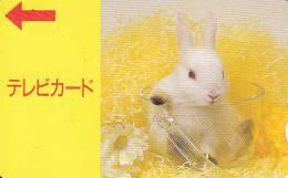 JAPAN - Rabbit Prepaid Card, Used - Konijnen