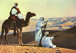 NEGED , Nomadi Del Deserto - Arabie Saoudite