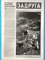 EX Yu.Serbia.Belgrad. The Newspaper 'Zadruga'. 1962. - Calendars