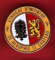 27077-pin's Neauphle Le Chateau.syndicat D'initiative.lion. . - Cities