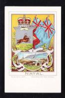 BR1-45 NATAL - Natal