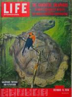 Magazine LIFE - OCTOBER 13 , 1958 - INTER. ED. -  FORMOSE -  MAKARIOS - Elizabeth TAYLOR - B. BARDOT - RENAULT   (3061) - Nouvelles/ Affaires Courantes