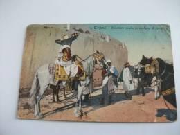 TRIPOLI Cavaliere Arabo In Costume Di Fantasia Cavallo Libia - Costumi