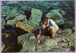 GRECE - GREECE - Travail Des Pêcheurs Fisherman's Business - Grèce