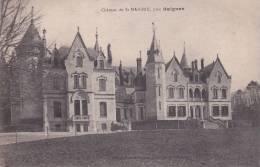 CPA 17  BAIGNES ,Château Sz St-MAIGRIN. - France