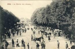 DOLE -- LE  MARCHE  DES  CHEVAUX - Dole
