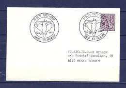 BELGIE, 12/06/1981 ST TRUIDEN  (GA8872) - Chauve-souris