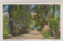 CPA MAGNOLIA GARDENS, CHARLESTON S.C - Charleston
