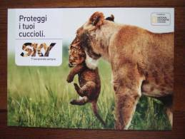 National Geographic Postale - Advertising