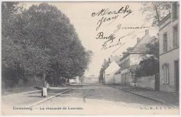 16992g CHAUSSEE De LOUVAIN - Cortenberg - Kortenberg