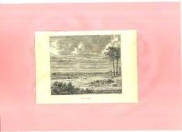 - LES LANDES  . GRAVURE SUR BOIS FIN DU XIXe S. - Prints & Engravings