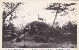 Japan Scene Showing Horse Monument - Japan