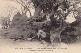 Afrique -  Niger - Curiosité - Four Dans Termitière - Niger