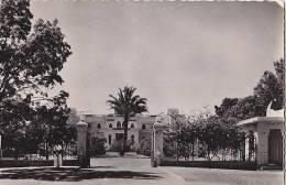 Afrique -  Niger - Niamey - Palais Du Gouverneur - Oblitération Niamey Avion - Niger